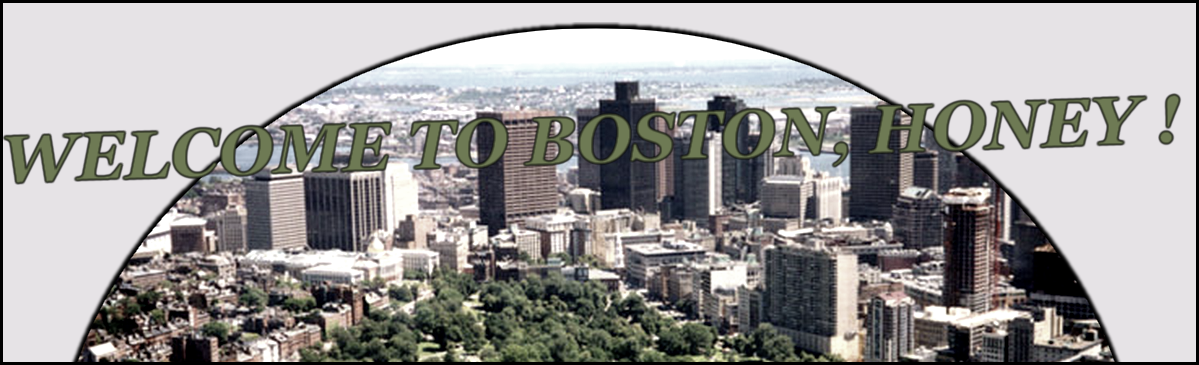 ♥ Boston ♥ Index du Forum