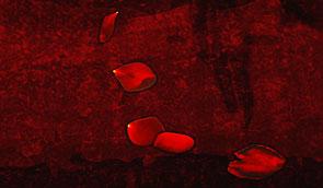 Vampire notre requiem Index du Forum